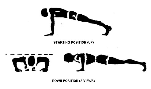 How-To-Do-A-Push-Up1.jpg